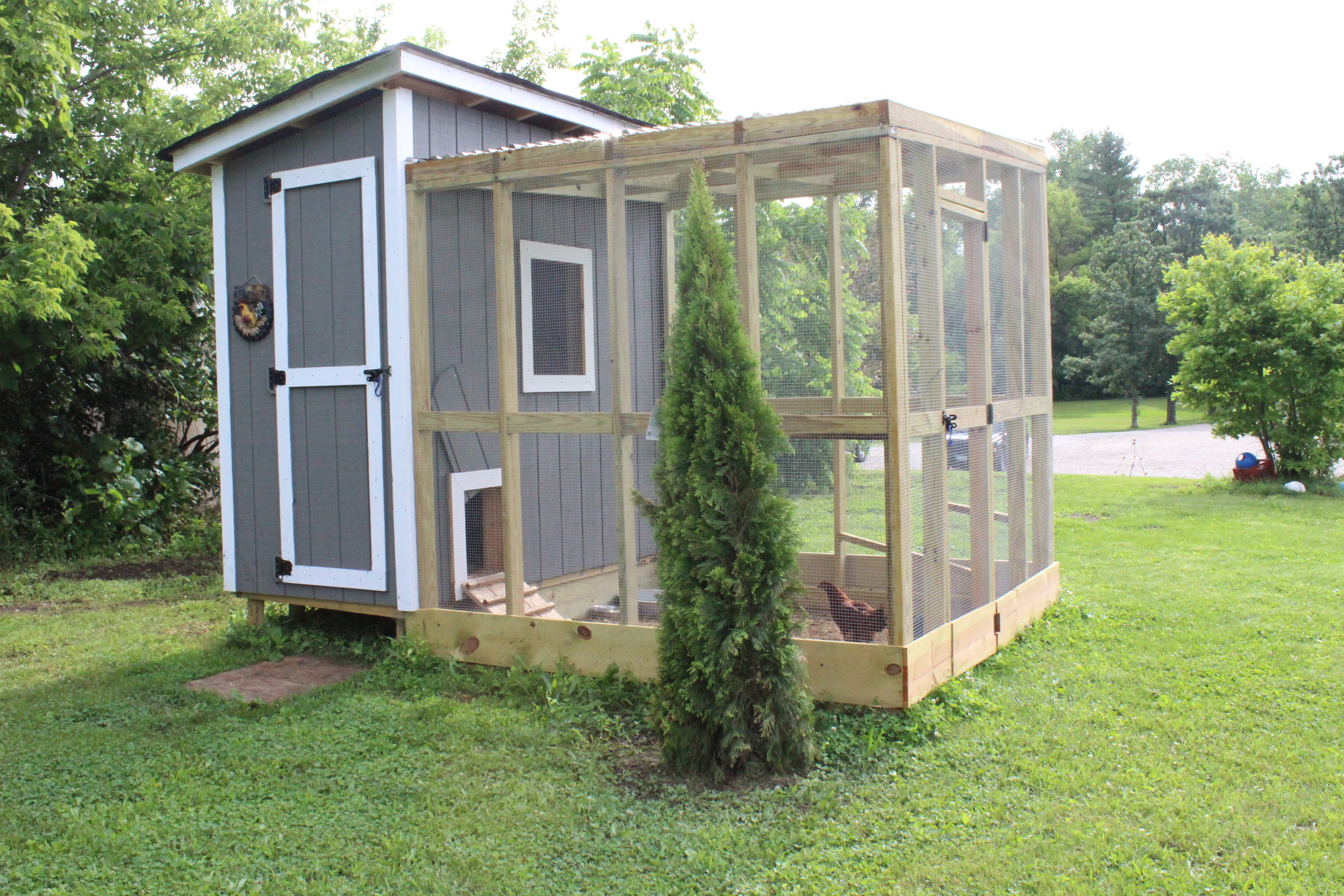 Backyard chicken house chicken coops for backyard flocks for Plans for a chicken coop for 12 chickens